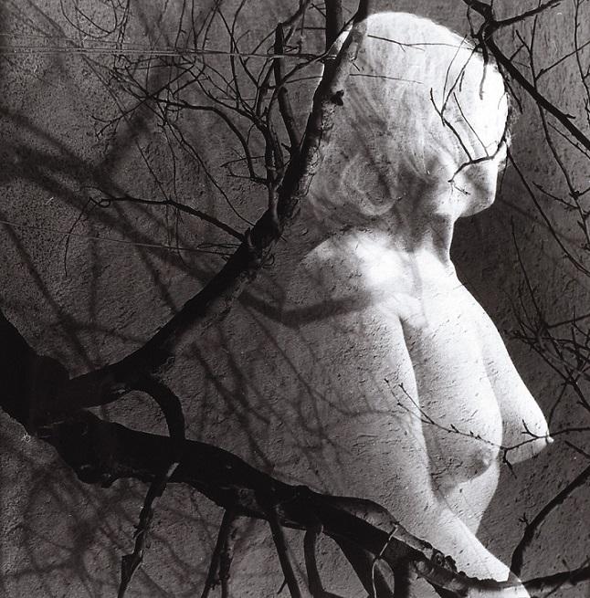 Ladislav Postupa nude tree