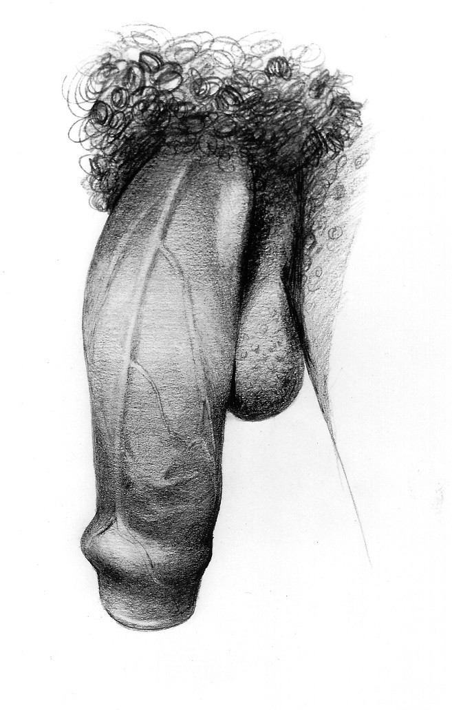 large penis close up by Betty Dodson