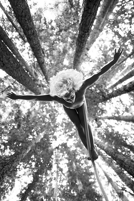 Lauren Herley, Redwoods, PRIVATE ACTS: The Acrobat Sublime