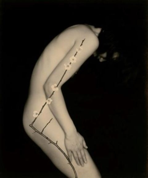 Masao Yamamoto nude portrait