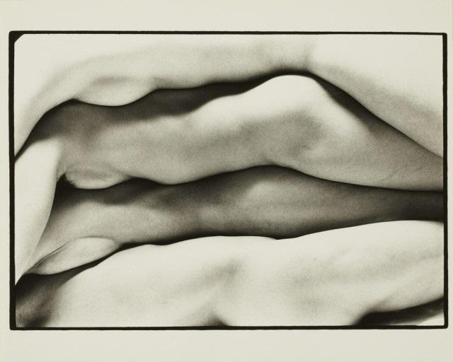 multiple nude bodies