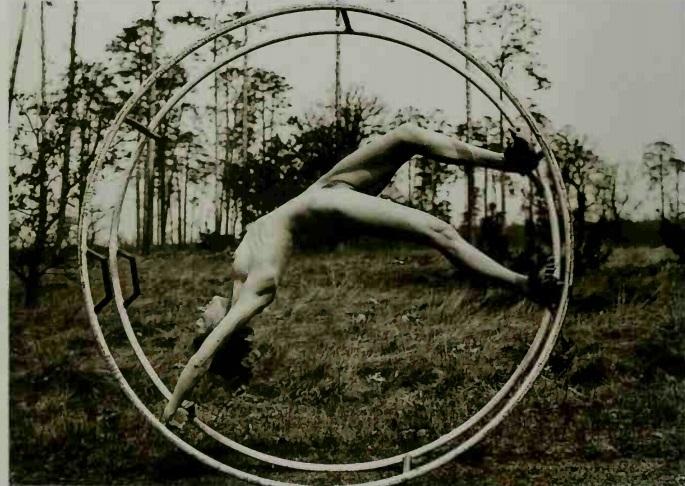 nude in wheel