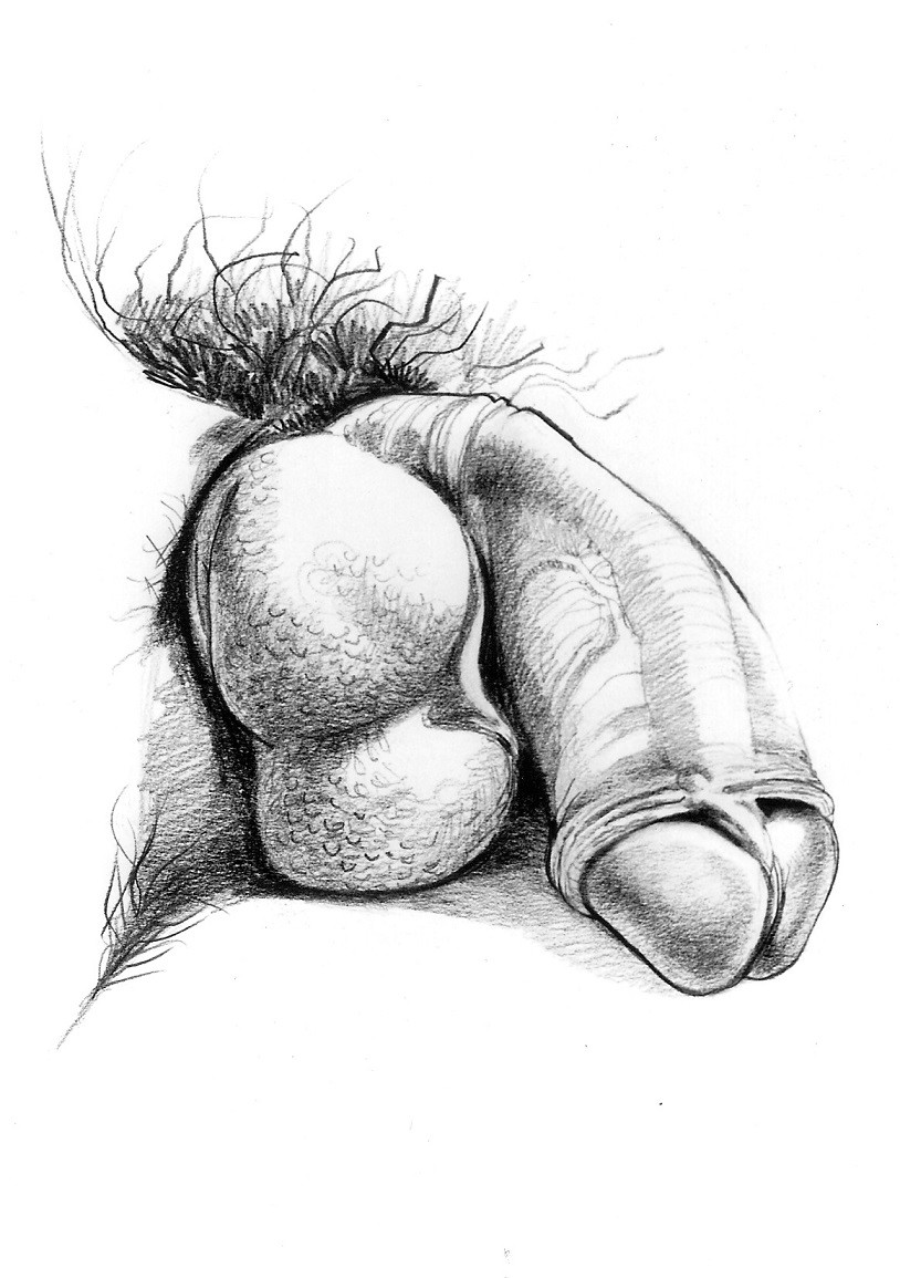 flaccid penis close up