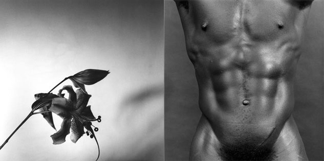 Robert Mapplethorpe, from The Perfect Moment,