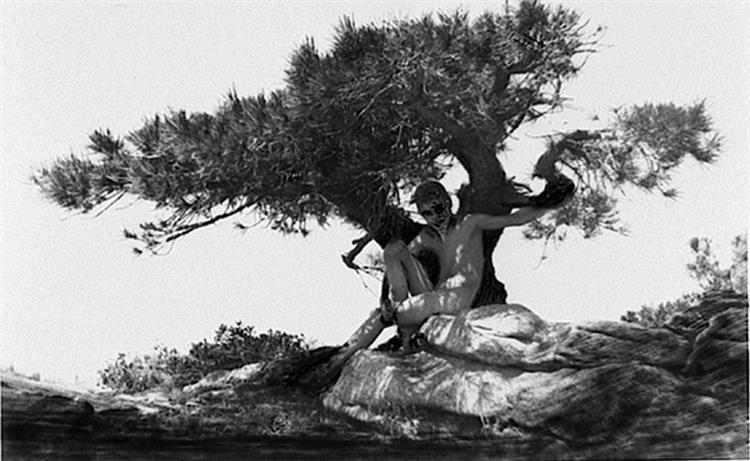 Satyr under a tree Anne Brigman