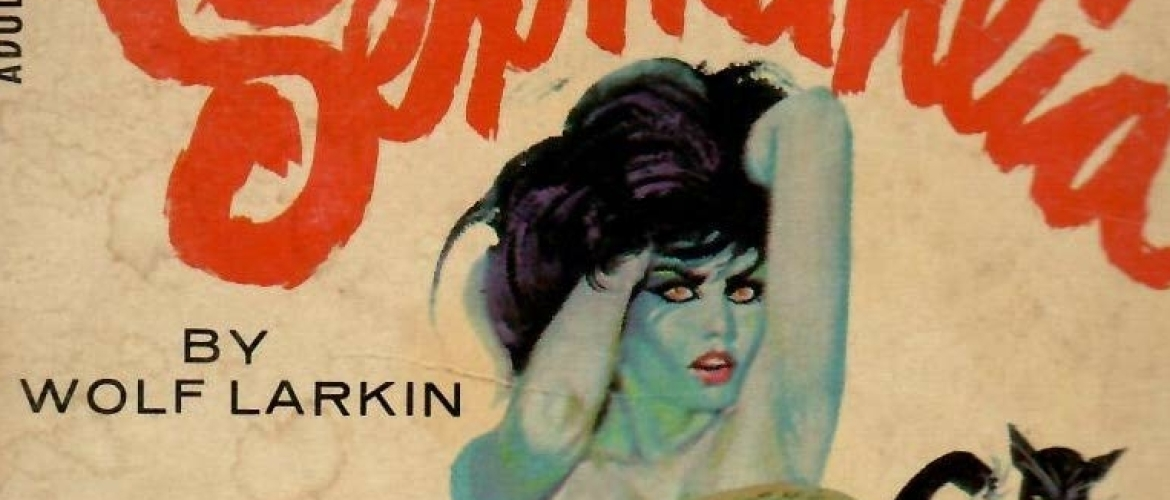 Top 40 Ways to Censor Female Nipples On Adult Books' Covers, Part Two