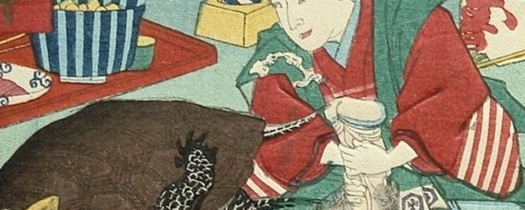 What Are the Secrets of the Genital Exaggeration in Shunga?