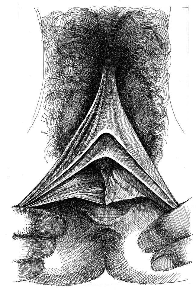 betty dodson stretching vagina