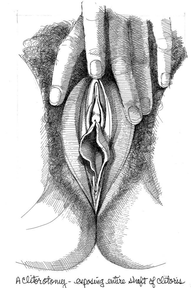 vulva art