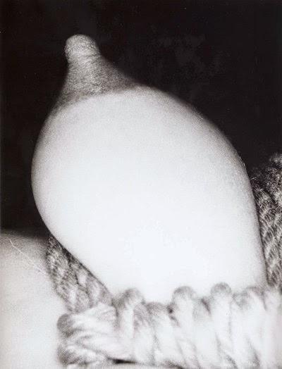 nobuysohi araki erotos