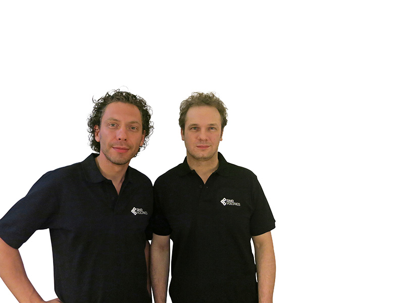Team Sinovoltaics
