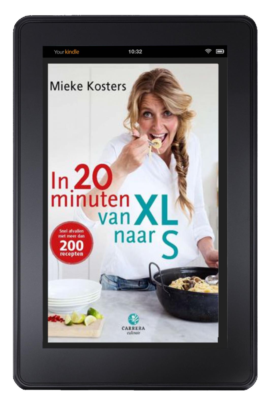 ebook-in-20-minuten-van-xl-naar-s