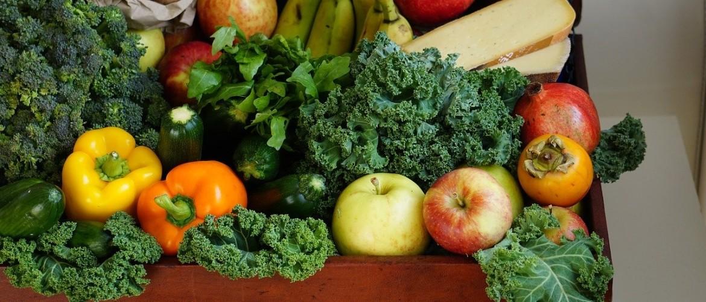 Bestaat het beste dieet?