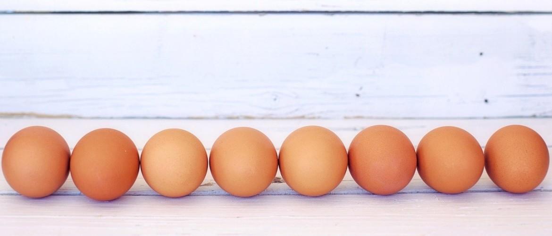 Eieren zijn gezond