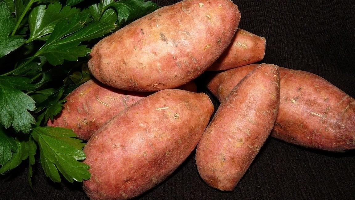 zoete aardappel en koolhydraatarm dieet