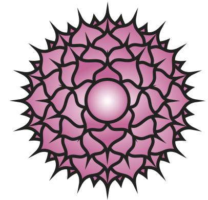 kruinchakra en kundalini
