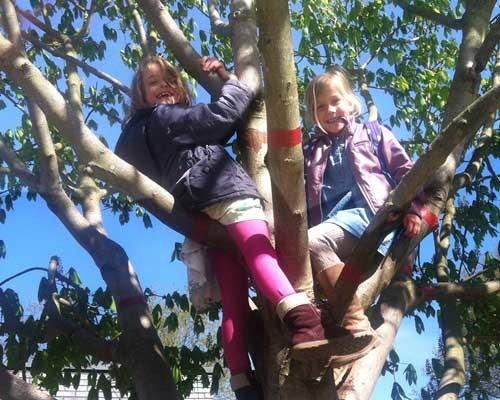 klimmen in een boom is lekker spannend