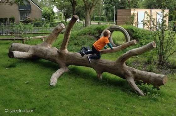 liggende klimboom voor groen schoolplein