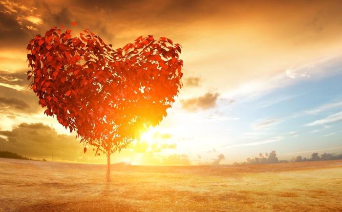 Alles is liefde