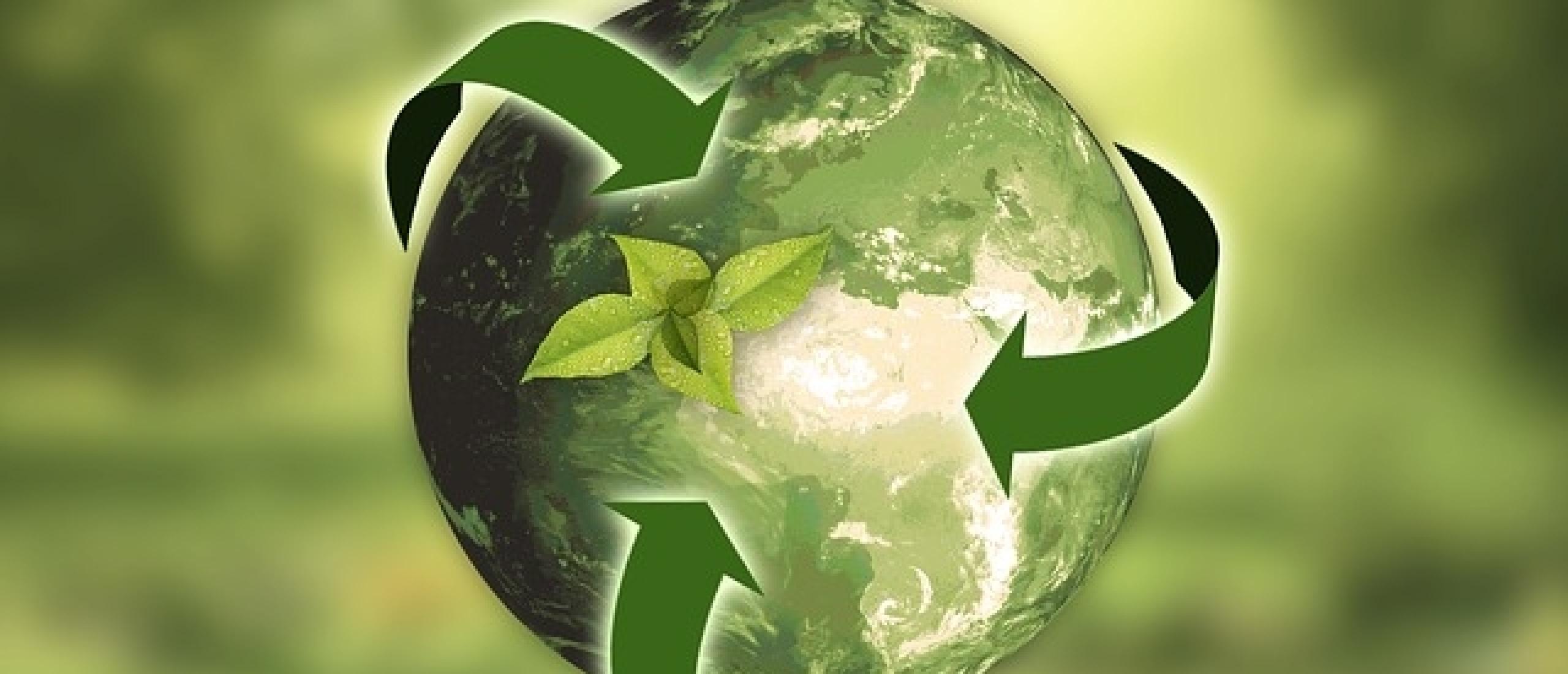 Duurzaamheid en circulariteit bieden businesskansen