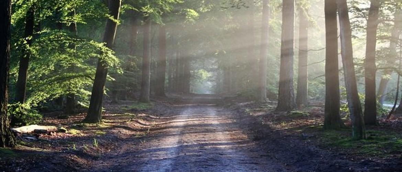 Wat kun je aankijken zonder weg te kijken bij een levenseinde?