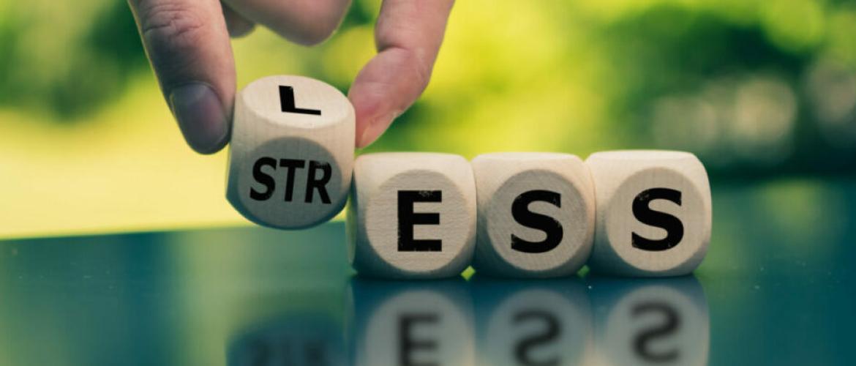Heb je last van studiekeuzestress? Wij gaan je helpen!