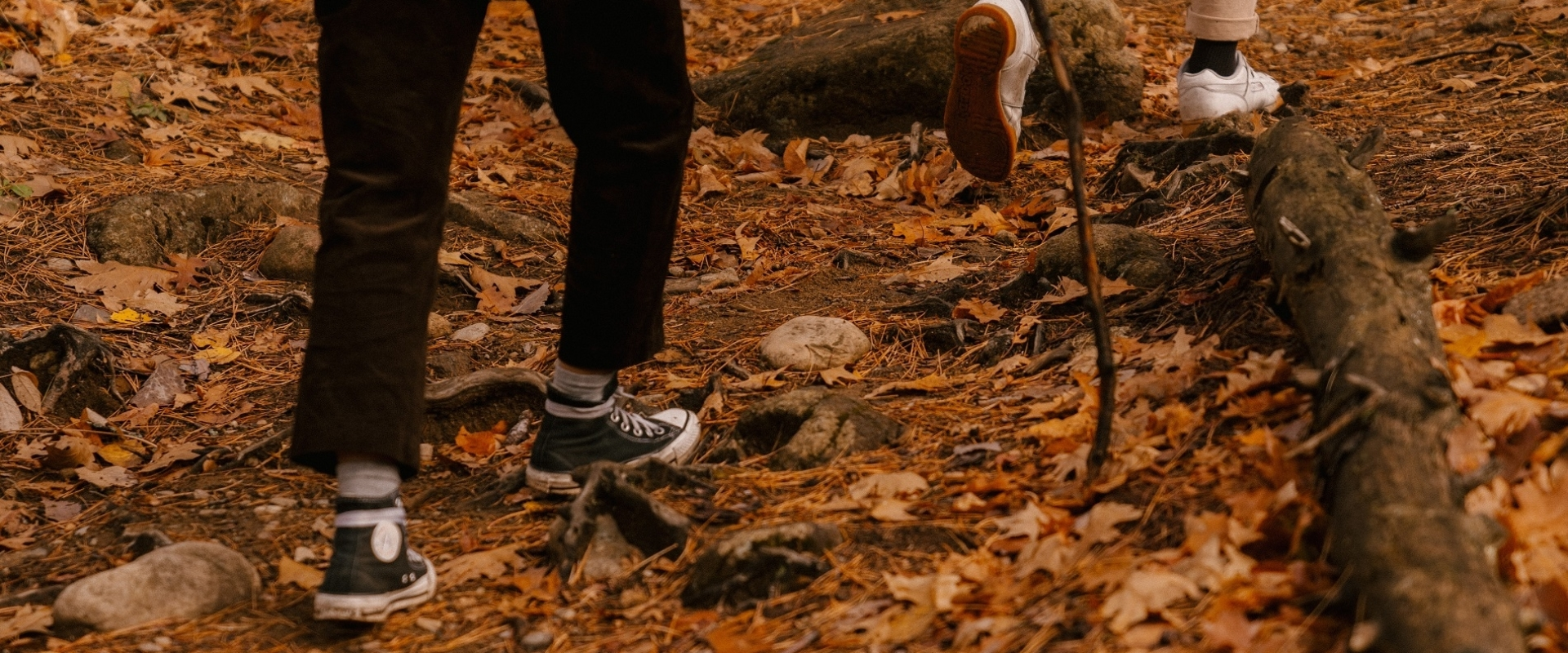 Wandelen in de natuur voor senioren in Smallingerland