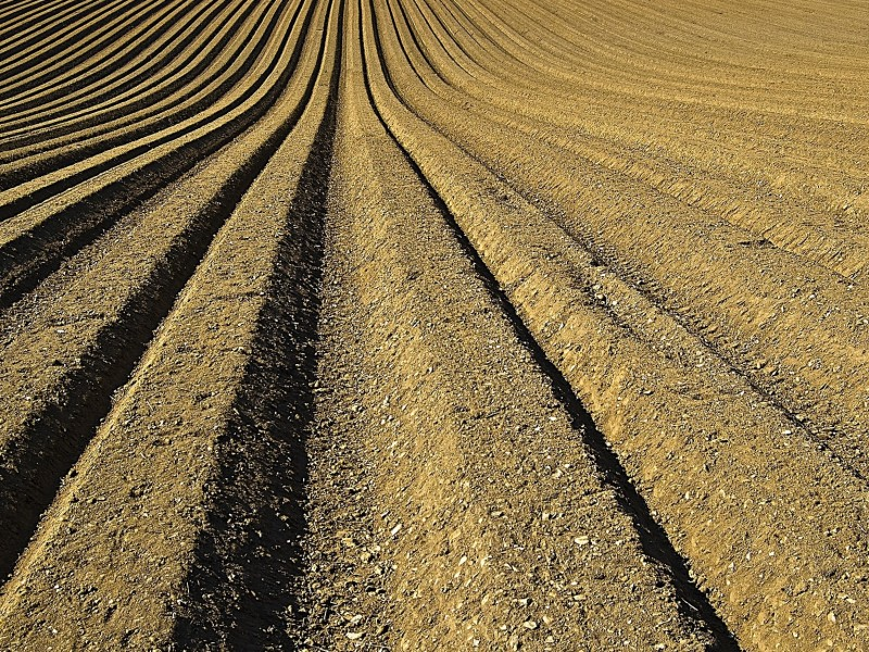 Sensors and instrumentation for soil research | SWAP instruments