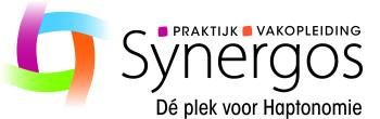 synergos 2020 1 1