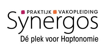 synergos 2020 1