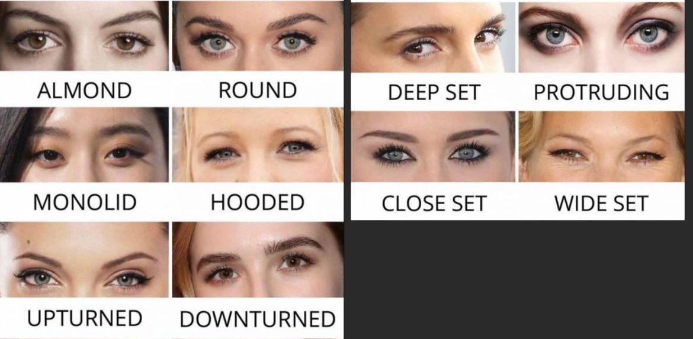 Verschillende soorten ogen
