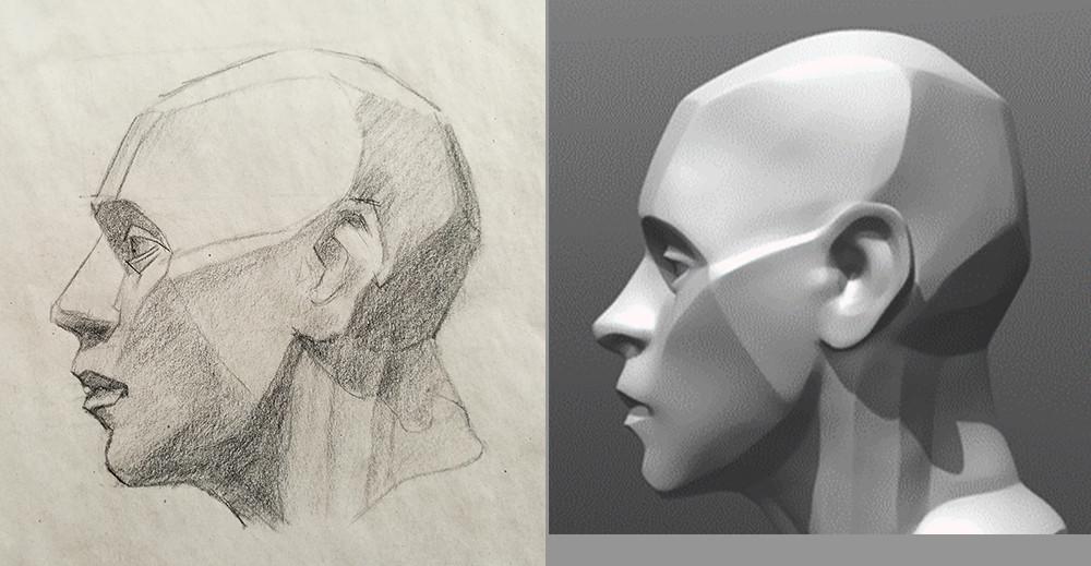 Portret tekenen kijken als een beeldhouwer