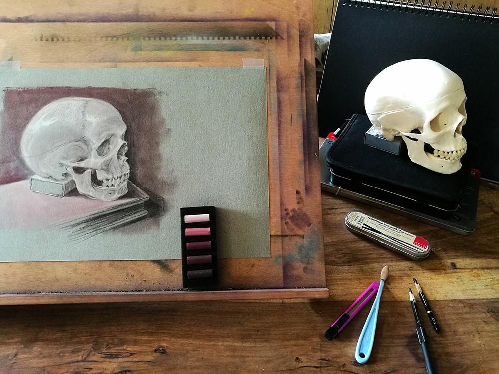 Leer de anatomie van de schedel tekenen