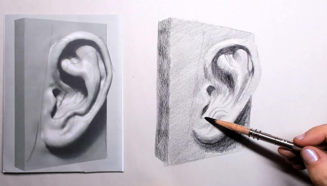 Oor tekenen stap 4: het driedimensionale gevoel