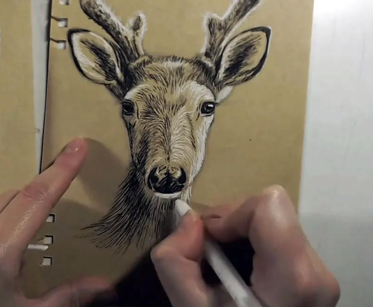 Gratis live online tekenles