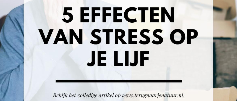 Wat zijn de gevolgen van stress op mijn lijf? Dit zijn de 5 gevolgen van stress op je lijf