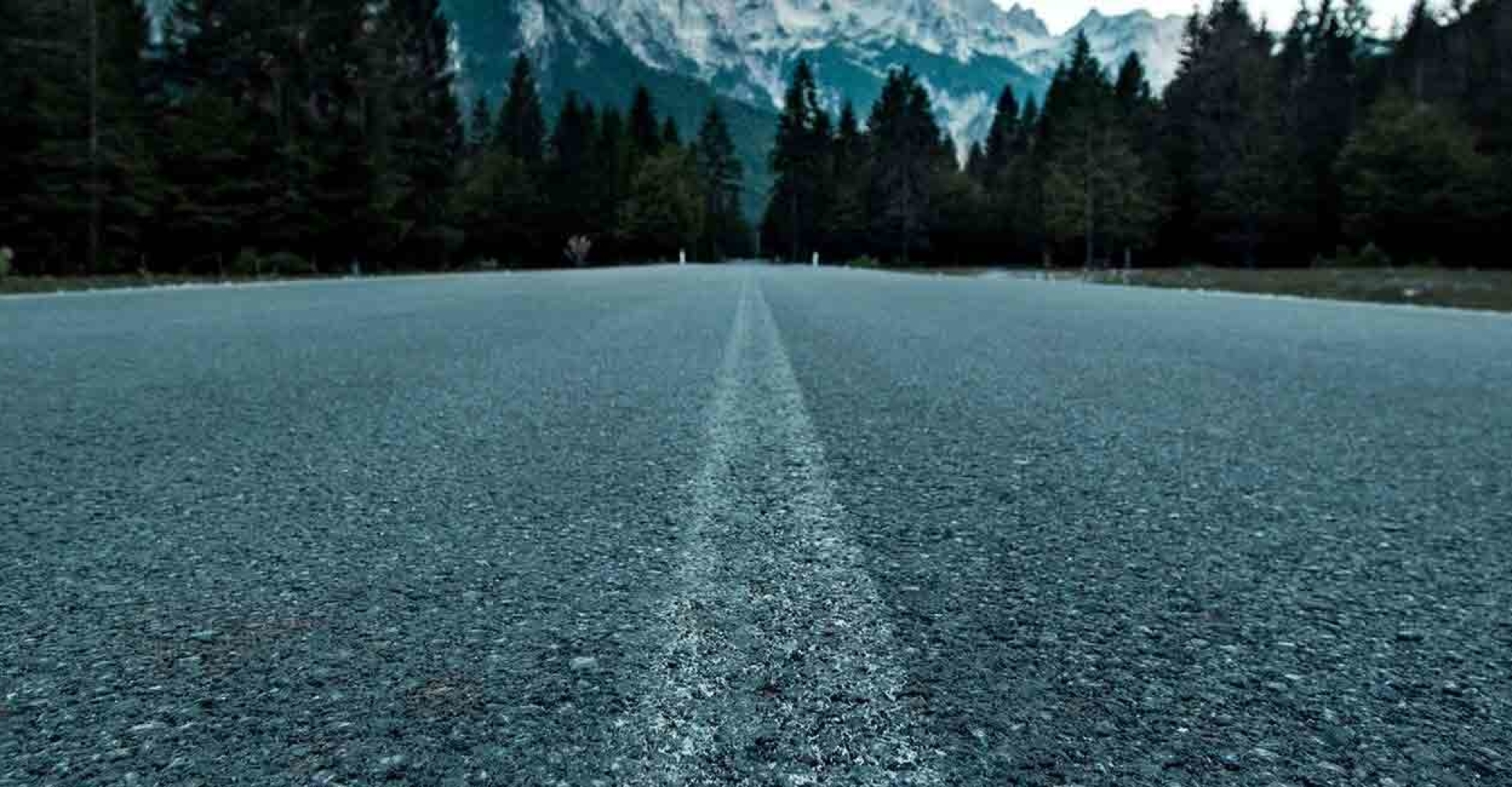 te-velde-coaching-weg-berg_650_lowq