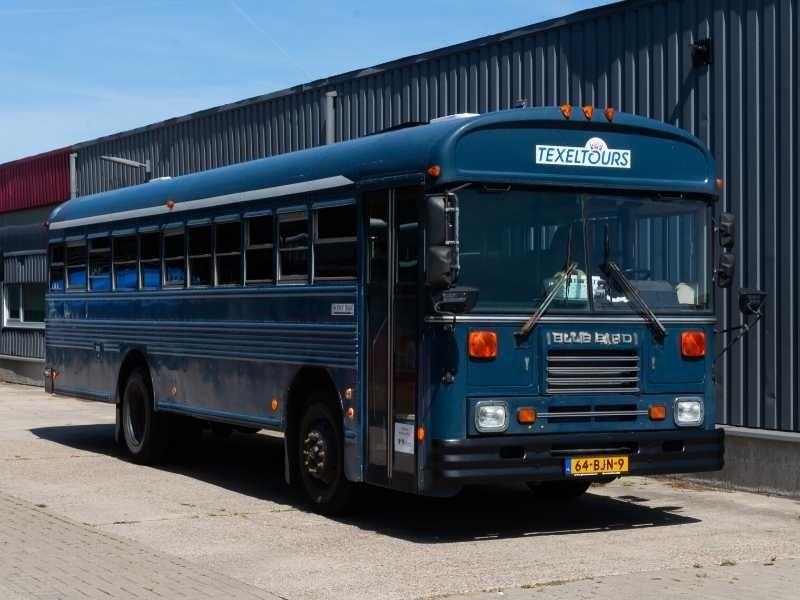 Amerikaanse schoolbus op Texel