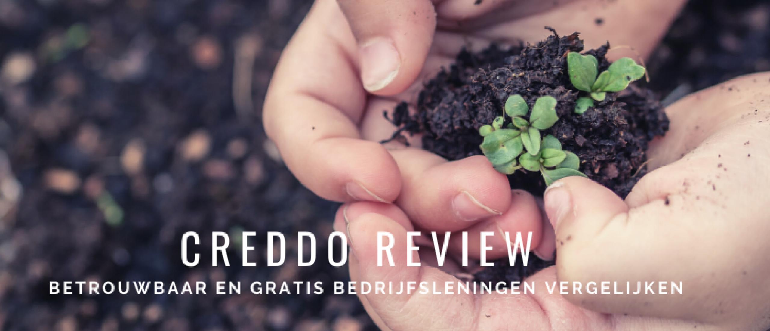 Creddo Review: Gratis Bedrijfsleningen Vergelijken als Ondernemer