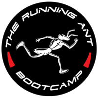 best bootcamp ever