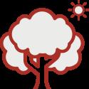 bootcamp-woensel-buitenlucht