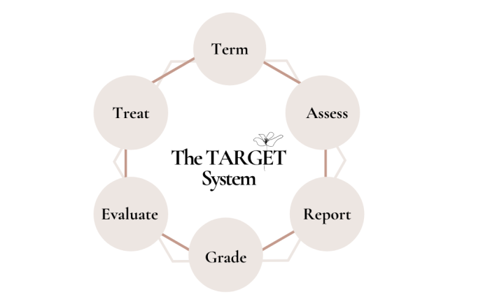the-target-system-round-white-background-fb