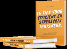 gratis ebook efficiënt thuiswerken voor professionals