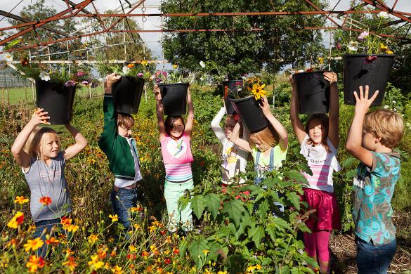 Kinderen op de Zomerbloemenpluktuin Amstelveen