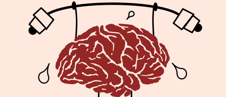 Denken met je darmen: de darm-brein-as