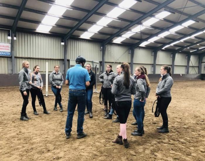 Groepslessen en clinics Paard en Gedrag