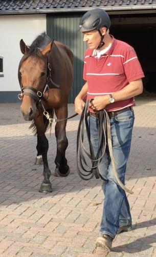 Rob Jonkers - Trainer Paard en Gedrag