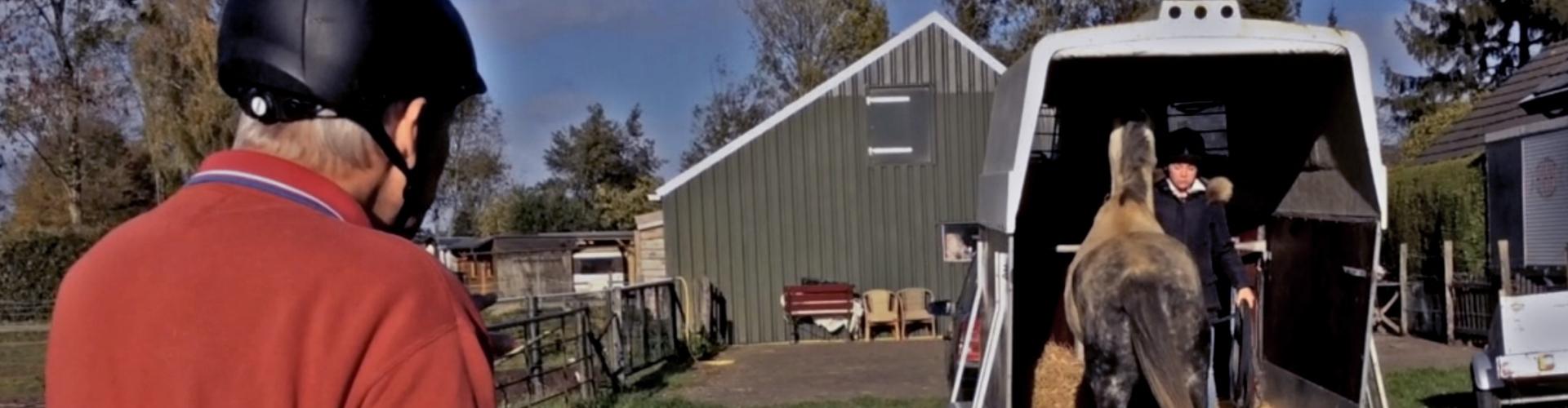 Hulp bij het in de trailer laden van je paard