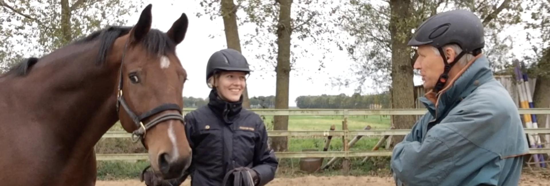 Training van je paard