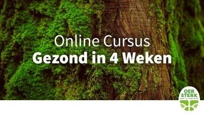 Online cursus gezond in 4 weken